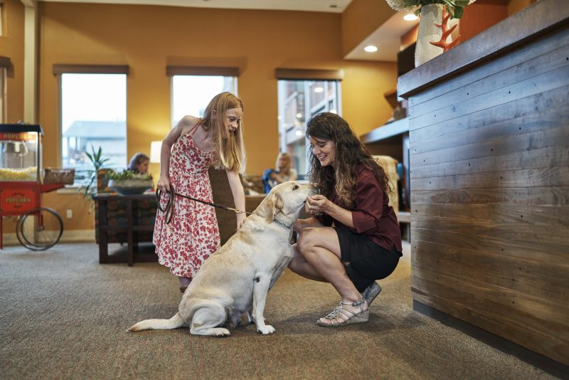 Front desk staff and dogs.