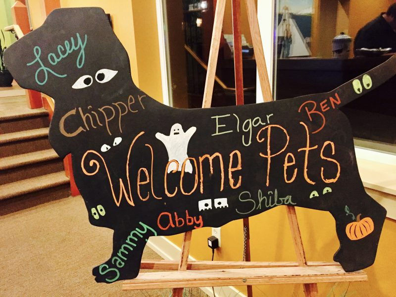Welcome pets board.