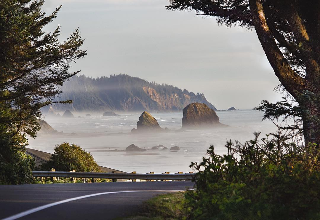 The moment the Oregon coast appears beyond the trees 📷: @joe.perron  #surfsand #explorecannonbeach #neverstopexploring #cannonbeach #oregoncoast #thepeoplescoast #traveloregon #cannonbeachpnw #pnw #pnwonderland #ocean #pacific
