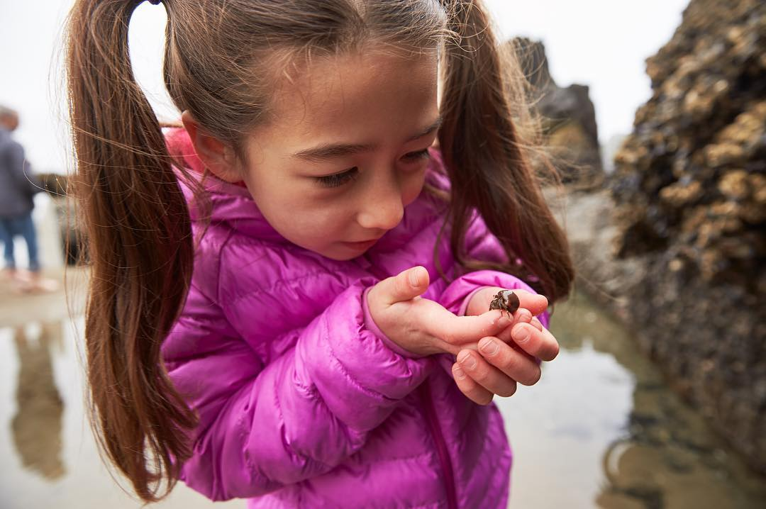 When you're small, but nature is even smaller. Tidepool pals. 🦀 📷: @judiaann  #surfsand #explorecannonbeach #neverstopexploring #cannonbeach #oregoncoast #thepeoplescoast #traveloregon #cannonbeachpnw #pnw #pnwonderland #ocean #pacific